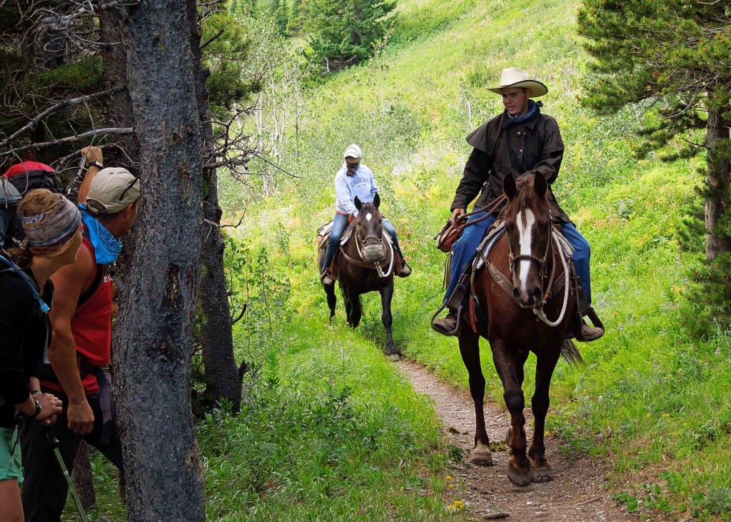 Stepping off the trail to let a horse train pass