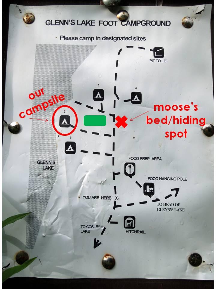Moose Storyboard