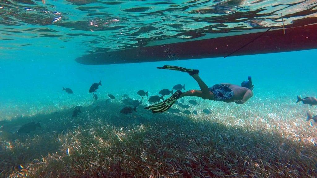 snorkel_jeff_under boat 2_edit
